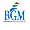 BGM Cont. L.L.C
