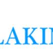 LAKINBERG ASSOCIATES